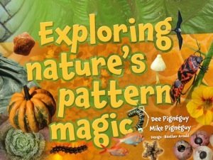 ExploringNaturesPatternMagic_Cover(1)